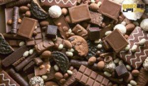 چرا خوردن شکلات برای گربه ها ممنوع است!